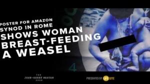 weasel-feeding